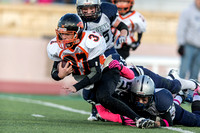 Pee Wee Playoffs Sunday 28th